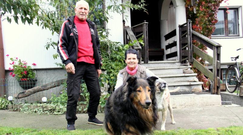 """Lassie zNowej Soli wrócił, pokonał ciężką chorobę. """"Wyleczyła go miłość"""""""